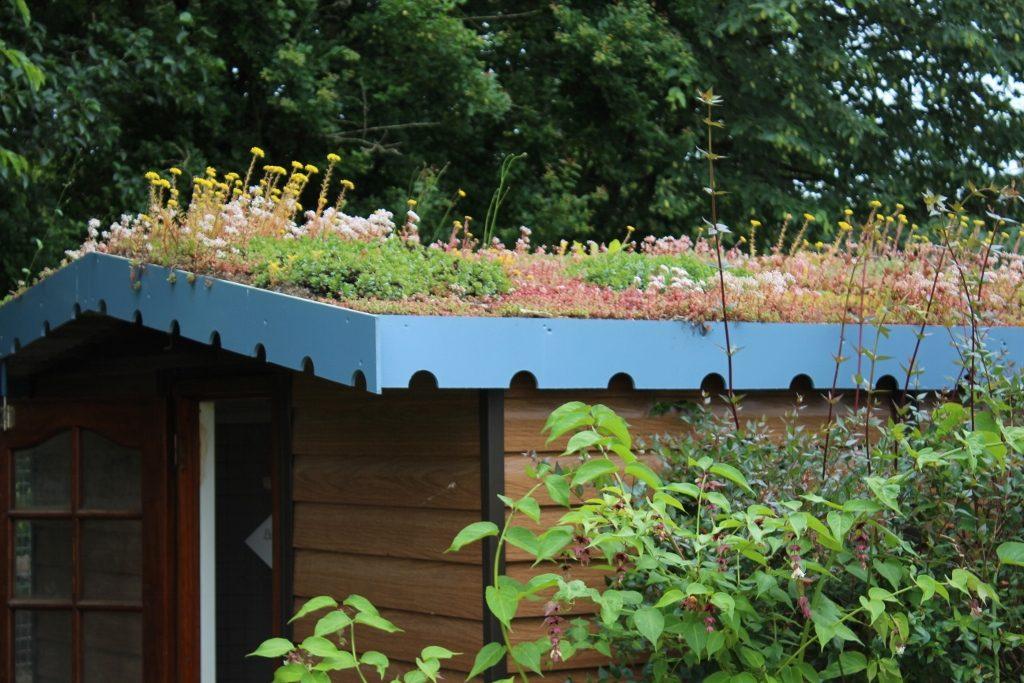 toit des chalets